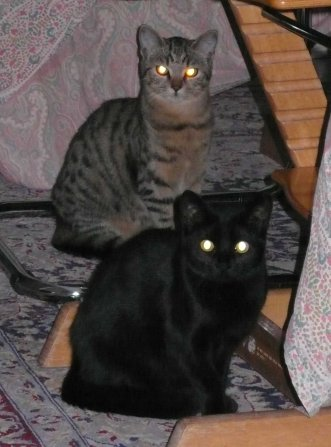 Zaccaria e Ismaela