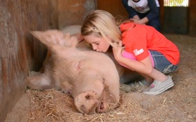 mckenna_kissing_pig