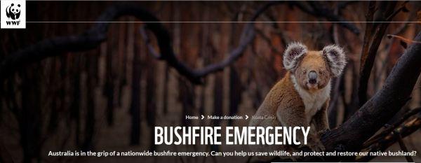 Bushfire_Emergency_Australia